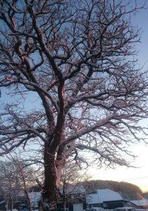 winter17-1
