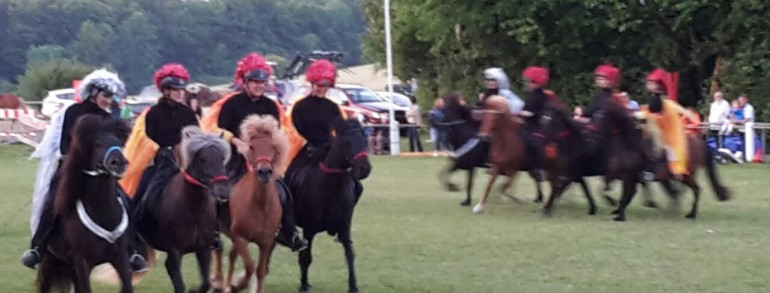 Ponyfest Schönbach 2015