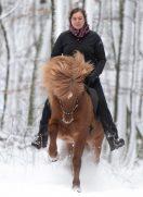 Zauberwald – oder Winter hat auch was Schönes….